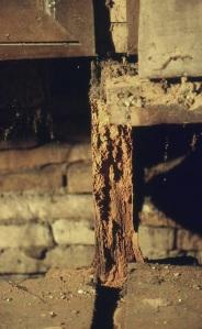 Dettagli condizioni dell'opera prima del restauro- foto Il Restauro srl
